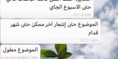 حقيقة إيقاف باصات جامعة الملك سعود لنقل الطالبات ورابط النقل الجامعي للطالبات