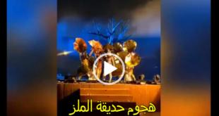 هجوم حديقة الملز , فيديو هجوم حديقة الملز , منفذ هجوم حديقة الملز