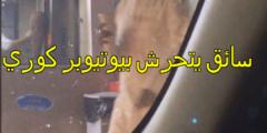 قصة سائق يتحرش بيوتيوبر كوري